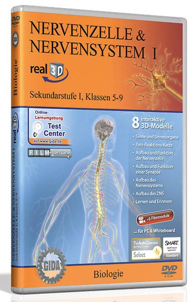 DVD: Nerve cell & nervous system