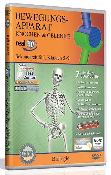 DVD: Musculoskeletal system