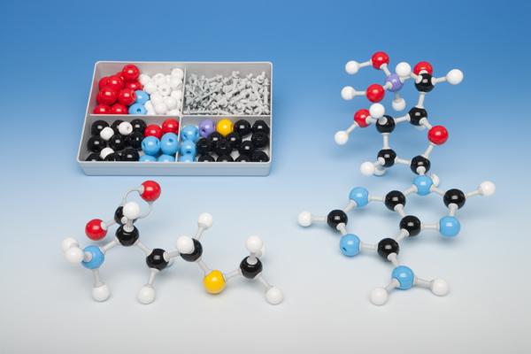 Molecule building set for students, biochemistry