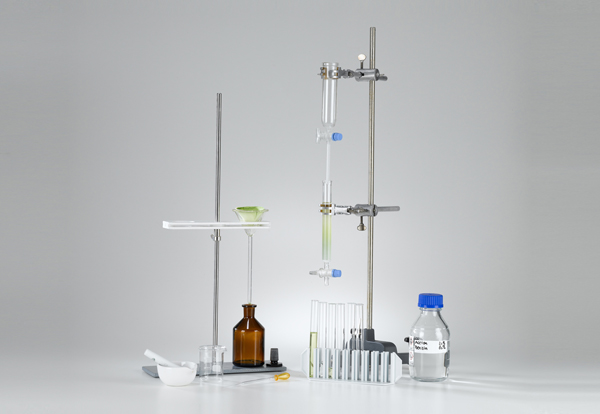Separation of a leaf extract with column chromatography